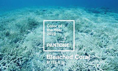 رنگ سال ۹۹ - ۲۰۲۰